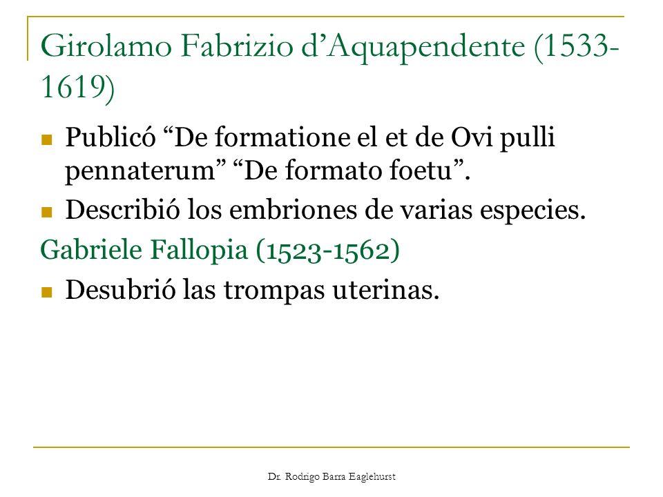 Girolamo Fabrizio d'Aquapendente (1533-1619)