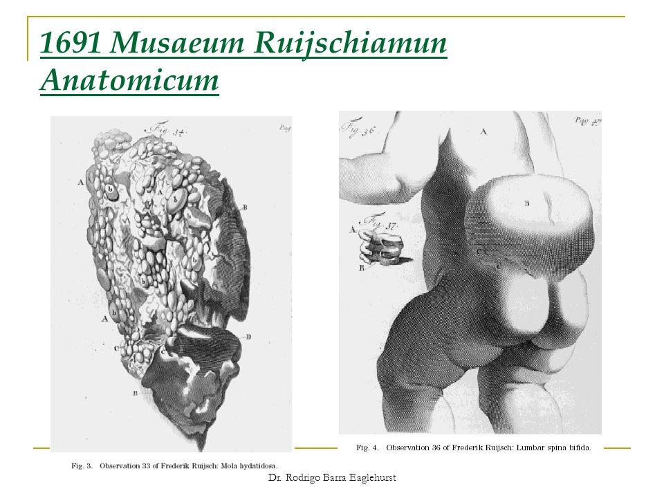 1691 Musaeum Ruijschiamun Anatomicum