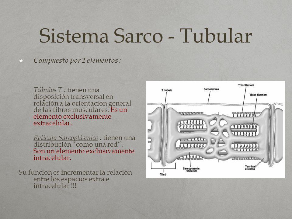 Sistema Sarco - Tubular