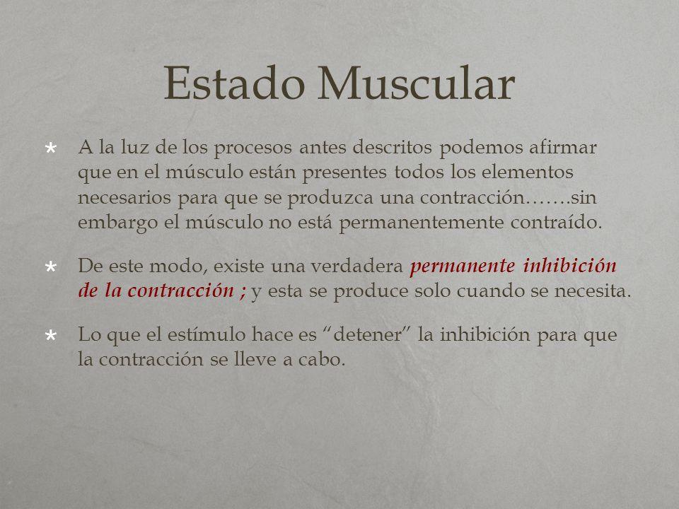 Estado Muscular