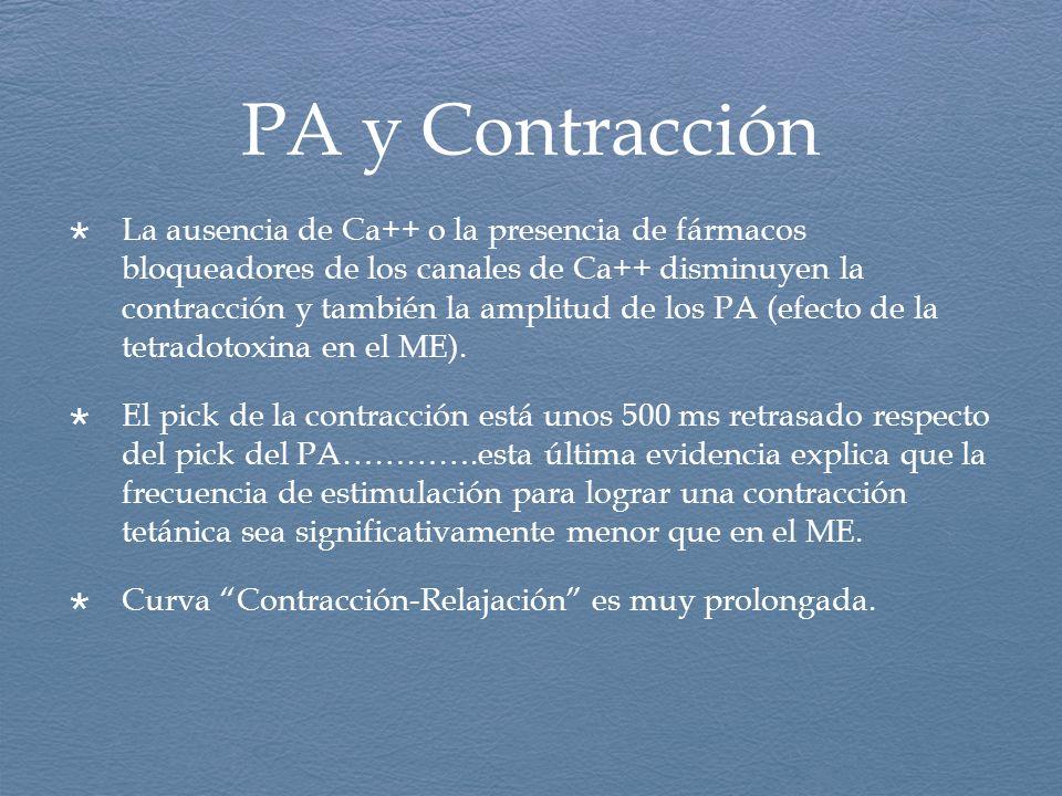 PA y Contracción