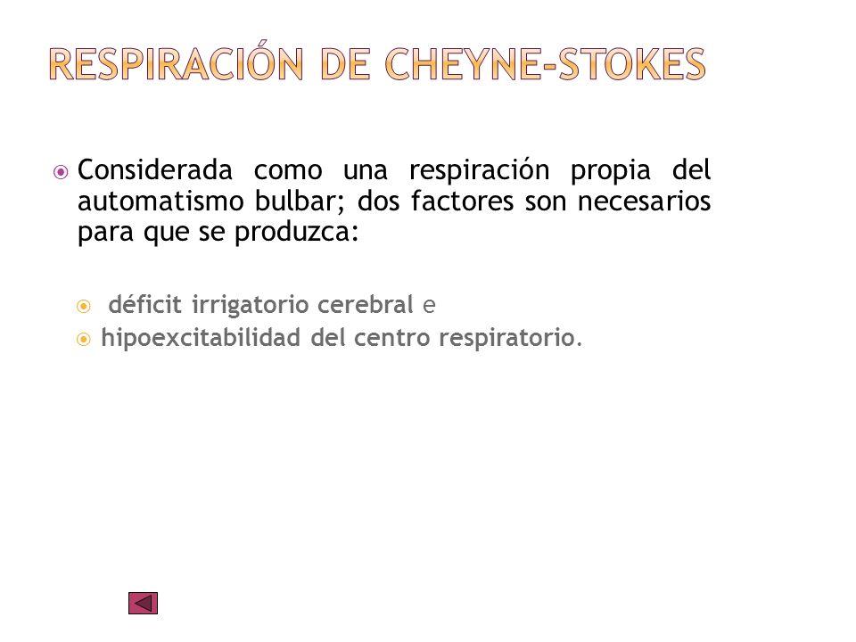 Respiración de Cheyne-Stokes