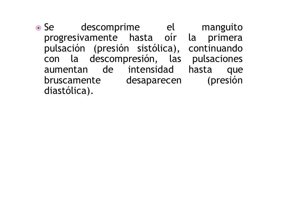 Se descomprime el manguito progresivamente hasta oír la primera pulsación (presión sistólica), continuando con la descompresión, las pulsaciones aumentan de intensidad hasta que bruscamente desaparecen (presión diastólica).