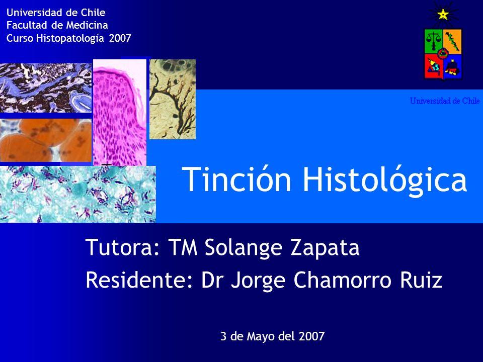 Tinción Histológica Tutora: TM Solange Zapata