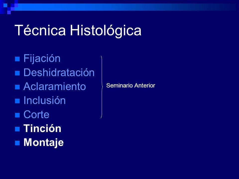 Técnica Histológica Fijación Deshidratación Aclaramiento Inclusión