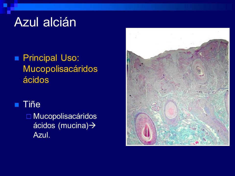Azul alcián Principal Uso: Mucopolisacáridos ácidos Tiñe
