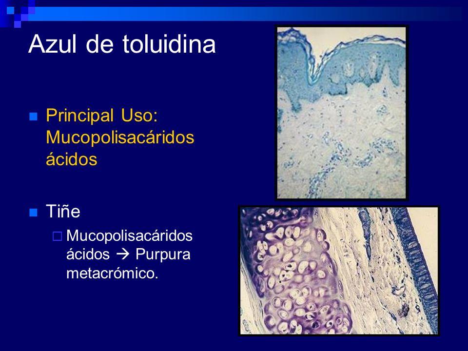 Azul de toluidina Principal Uso: Mucopolisacáridos ácidos Tiñe