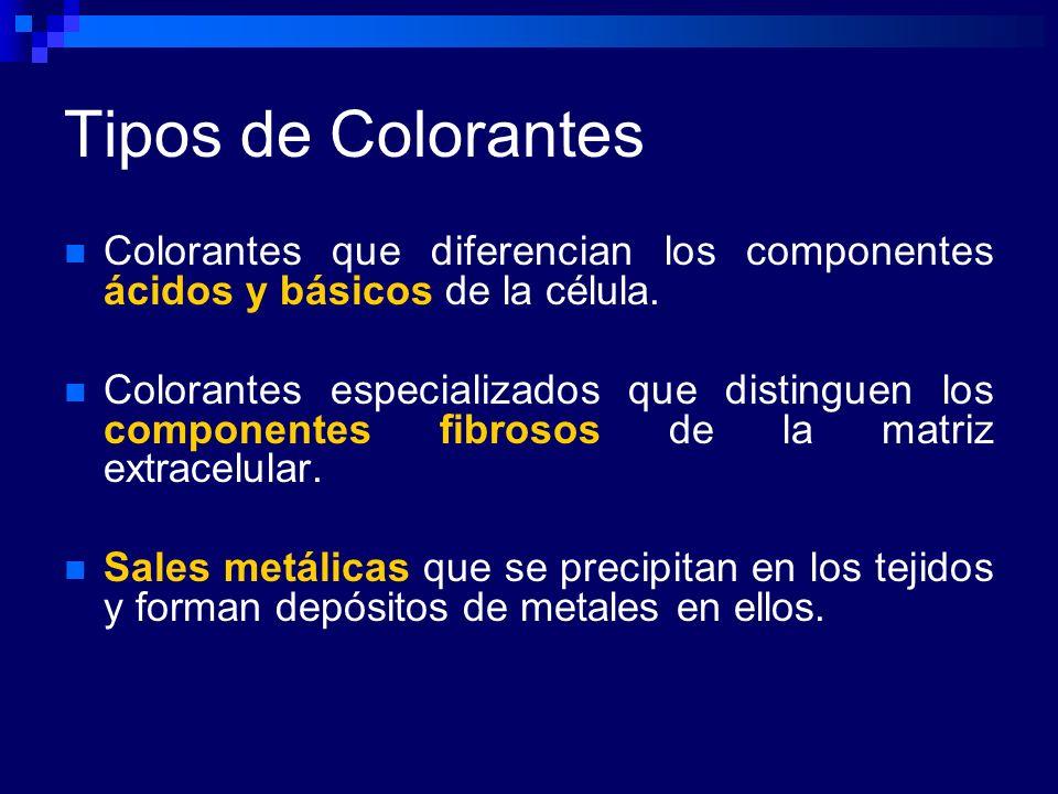 Tipos de ColorantesColorantes que diferencian los componentes ácidos y básicos de la célula.