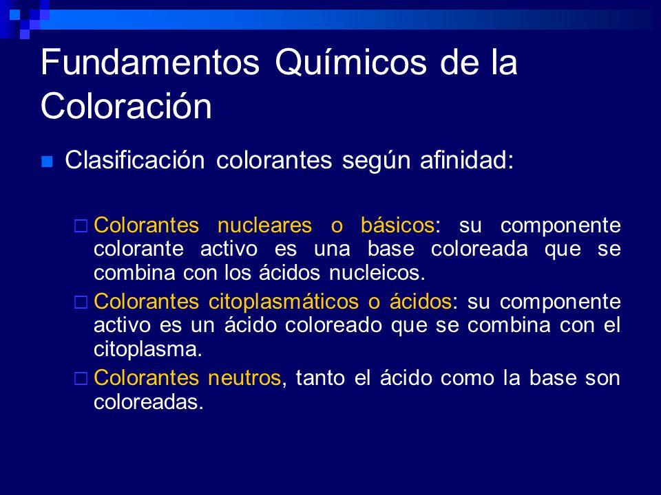 Fundamentos Químicos de la Coloración