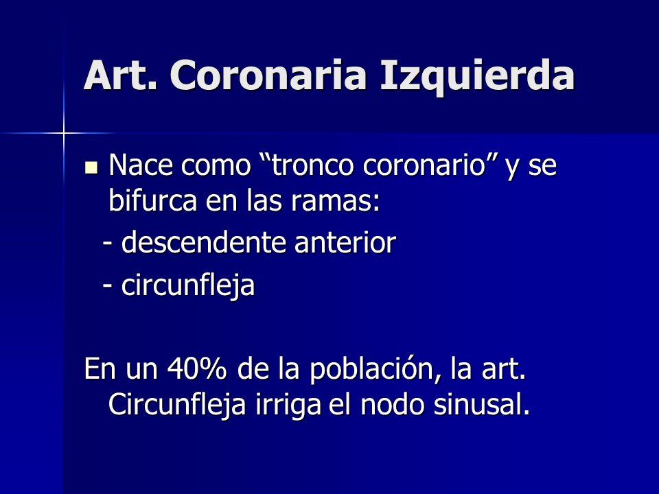Art. Coronaria Izquierda