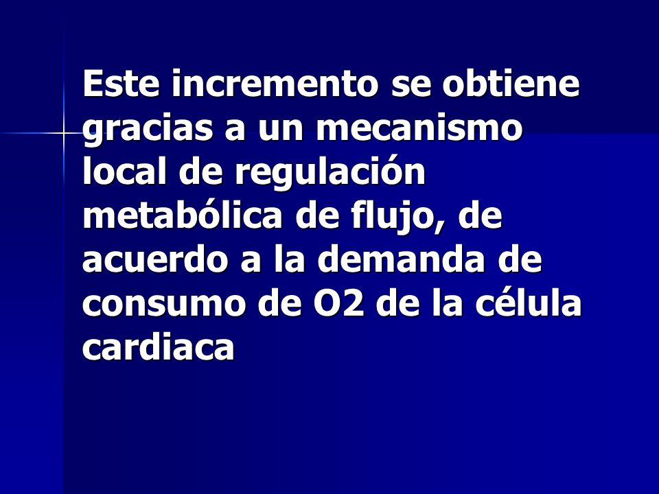 Este incremento se obtiene gracias a un mecanismo local de regulación metabólica de flujo, de acuerdo a la demanda de consumo de O2 de la célula cardiaca