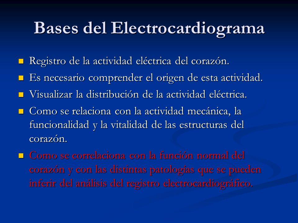 Bases del Electrocardiograma