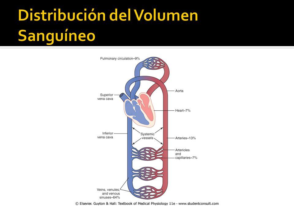 Distribución del Volumen Sanguíneo