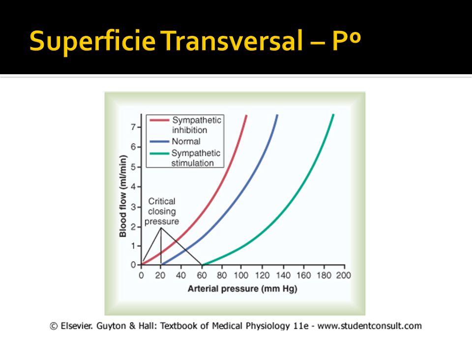 Superficie Transversal – Pº