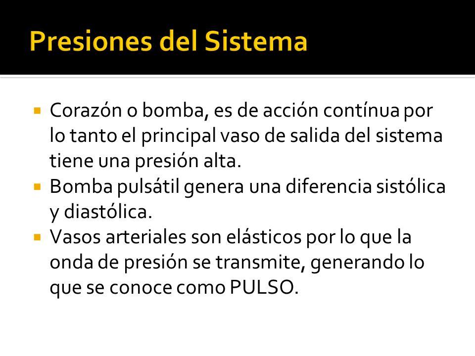 Presiones del Sistema Corazón o bomba, es de acción contínua por lo tanto el principal vaso de salida del sistema tiene una presión alta.