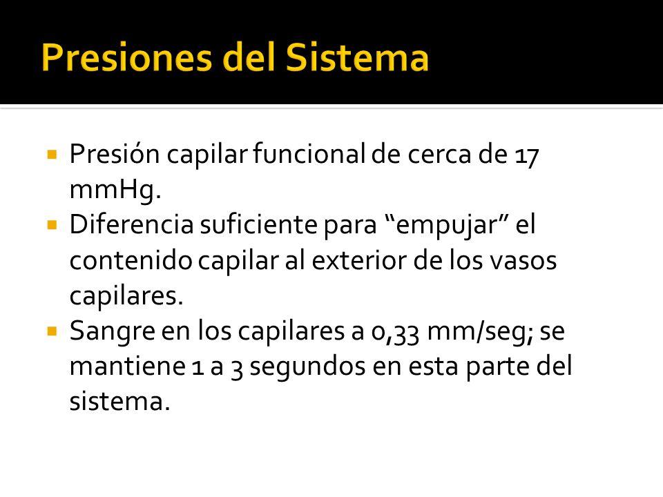 Presiones del Sistema Presión capilar funcional de cerca de 17 mmHg.