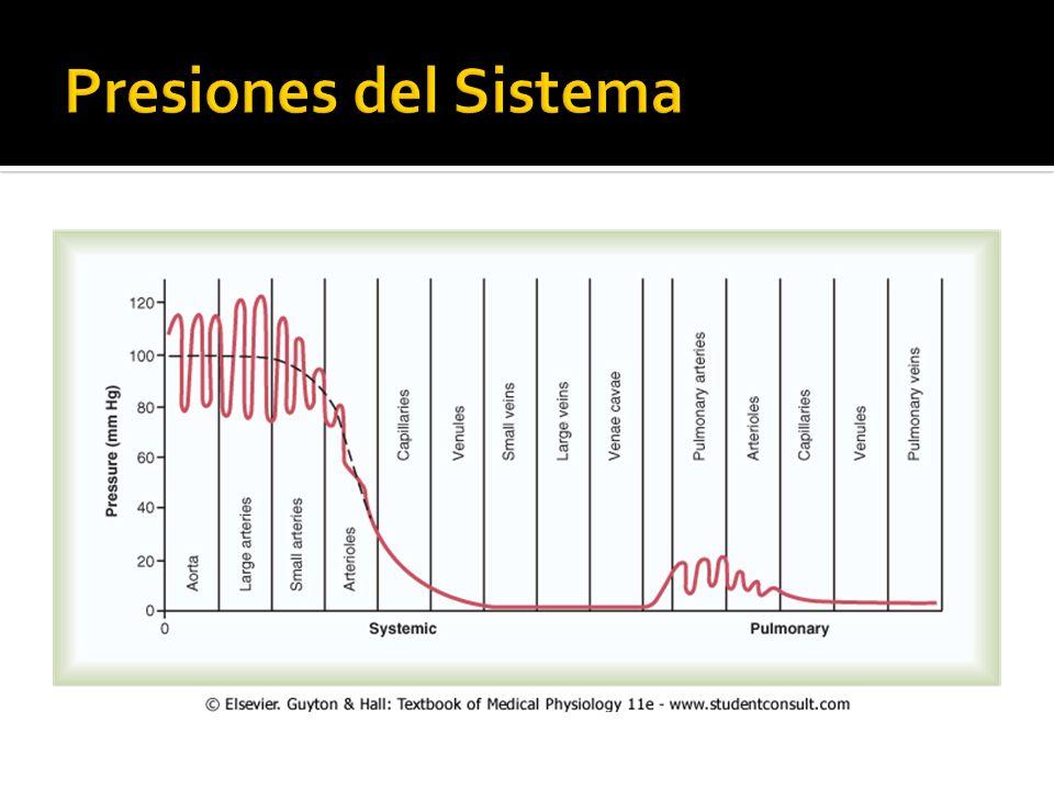 Presiones del Sistema