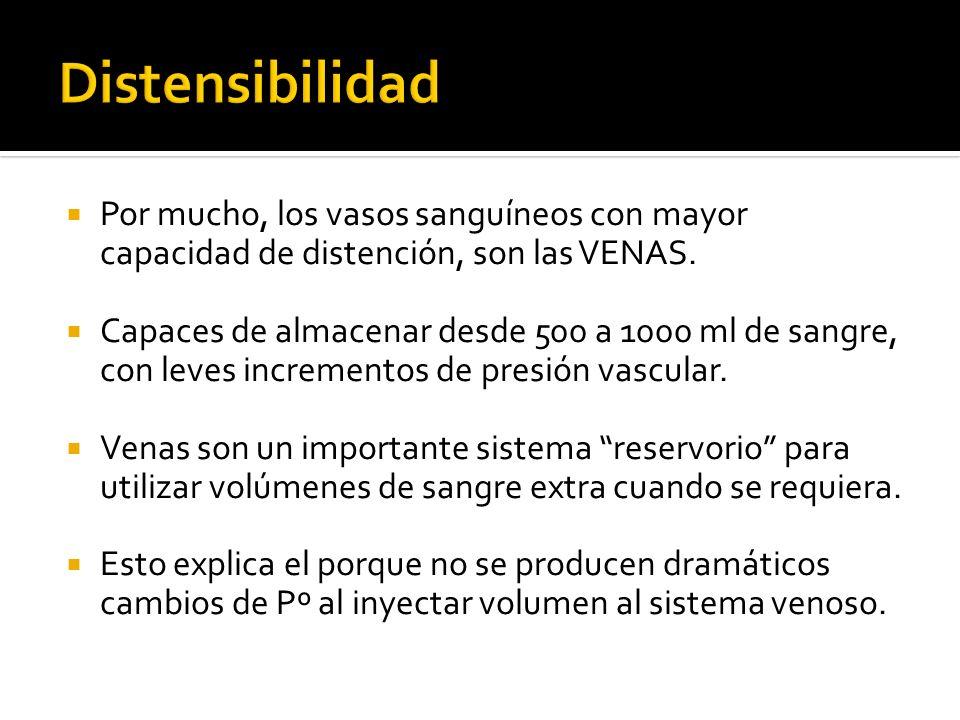 Distensibilidad Por mucho, los vasos sanguíneos con mayor capacidad de distención, son las VENAS.