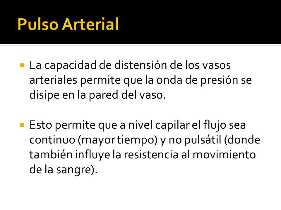 Pulso Arterial La capacidad de distensión de los vasos arteriales permite que la onda de presión se disipe en la pared del vaso.