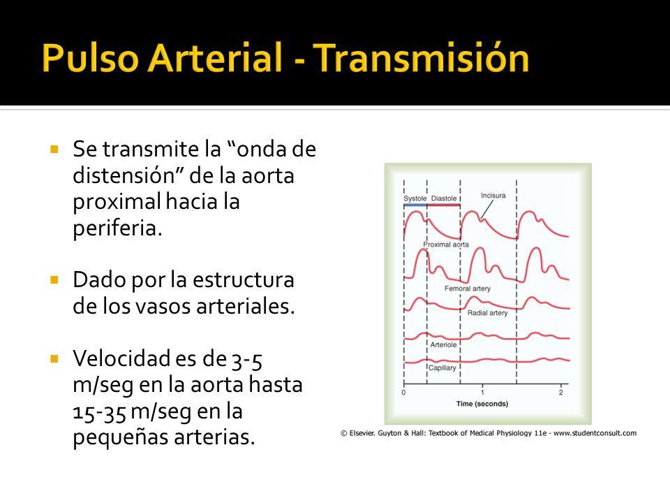 Pulso Arterial - Transmisión