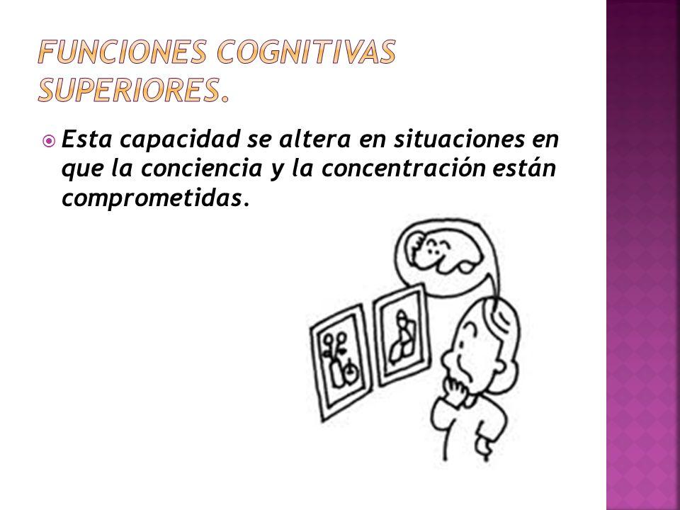 Funciones cognitivas superiores.