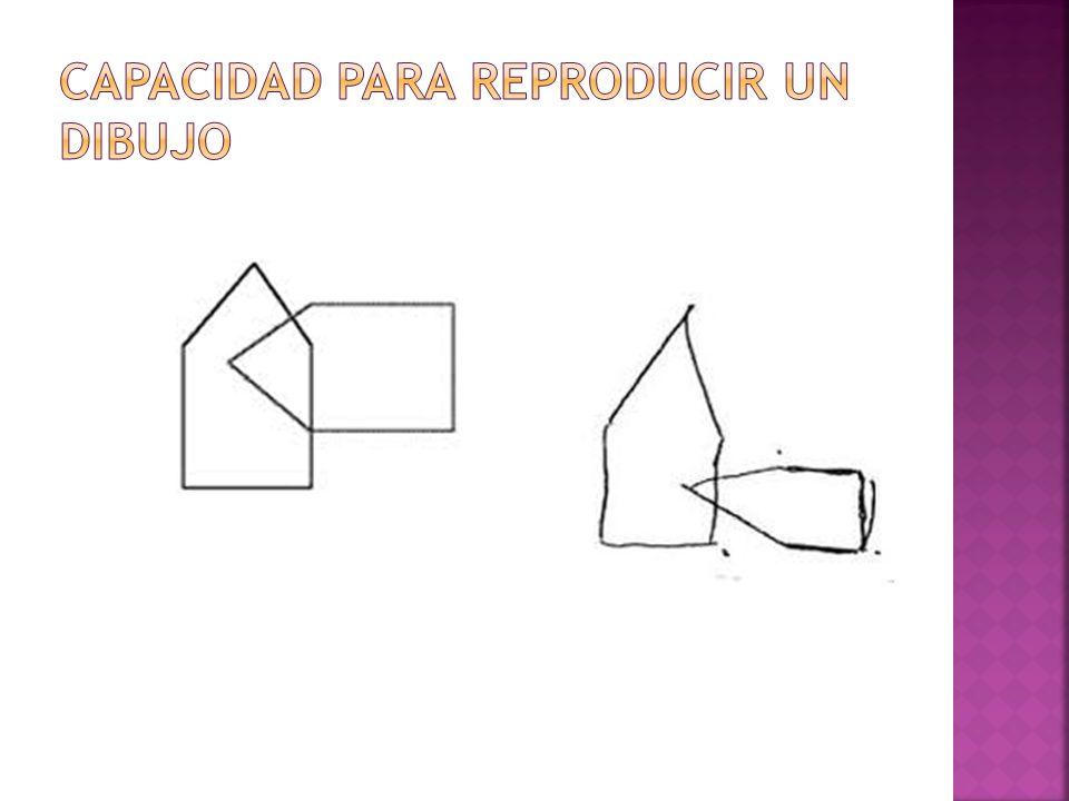 Capacidad para reproducir un dibujo