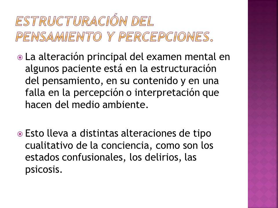 Estructuración del pensamiento y percepciones.