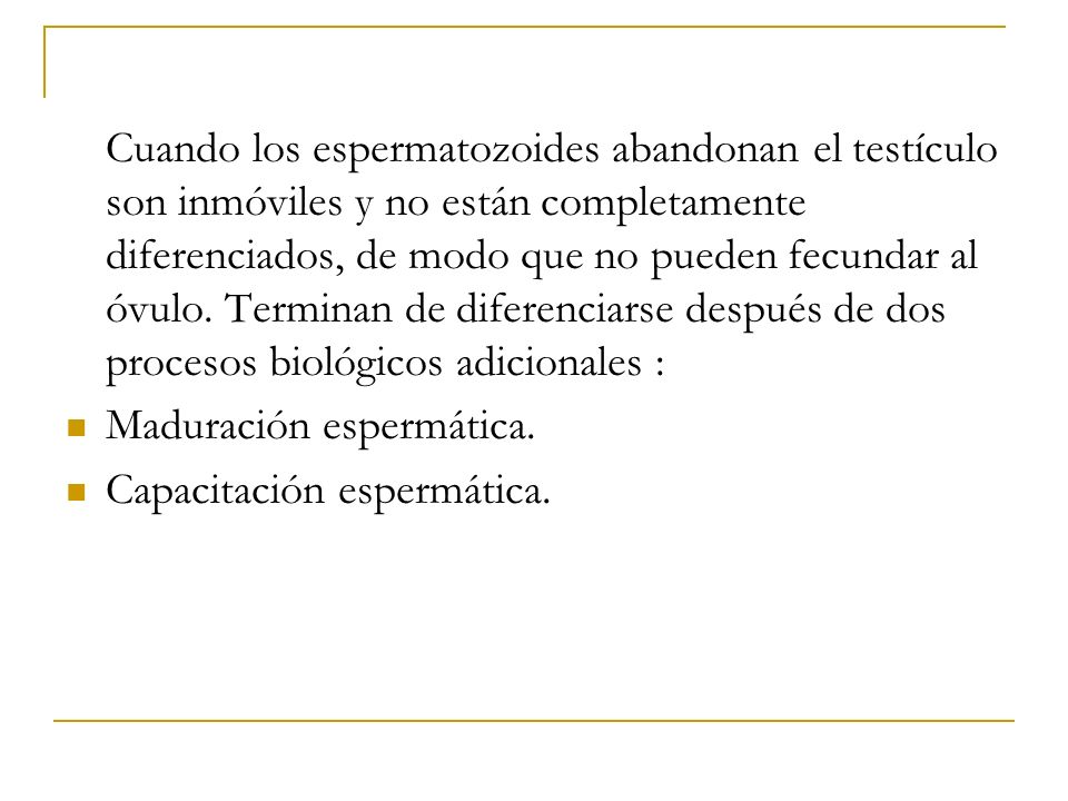 Cuando los espermatozoides abandonan el testículo son inmóviles y no están completamente diferenciados, de modo que no pueden fecundar al óvulo. Terminan de diferenciarse después de dos procesos biológicos adicionales :