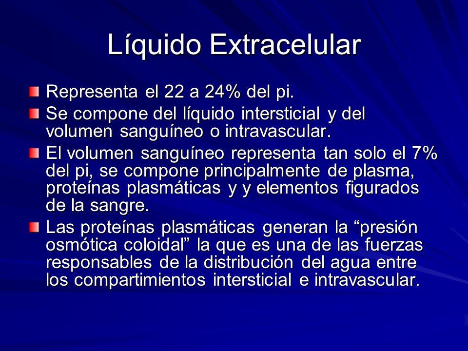 Líquido Extracelular Representa el 22 a 24% del pi.