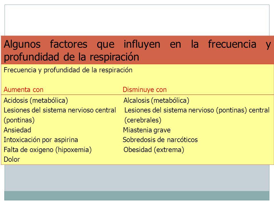 Algunos factores que influyen en la frecuencia y profundidad de la respiración