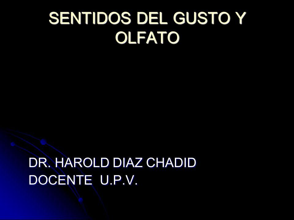 SENTIDOS DEL GUSTO Y OLFATO