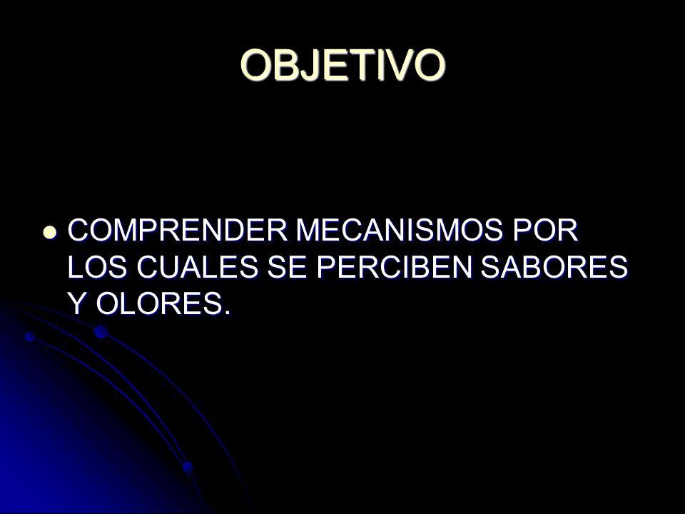 OBJETIVO COMPRENDER MECANISMOS POR LOS CUALES SE PERCIBEN SABORES Y OLORES.