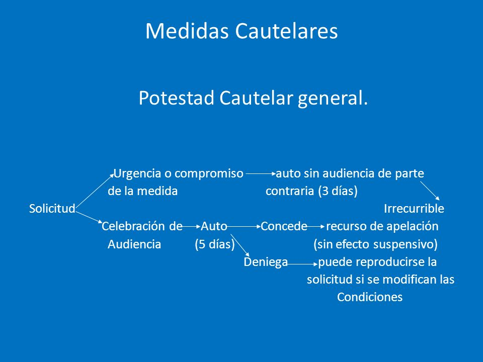 Medidas Cautelares Potestad Cautelar general.