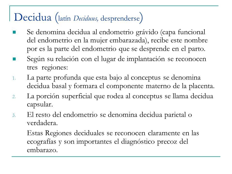 Decidua (latín Deciduus, desprenderse)