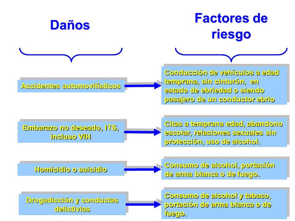 Factores de riesgo Daños