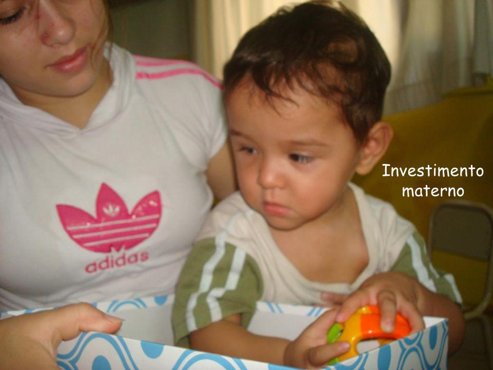 Investimento materno