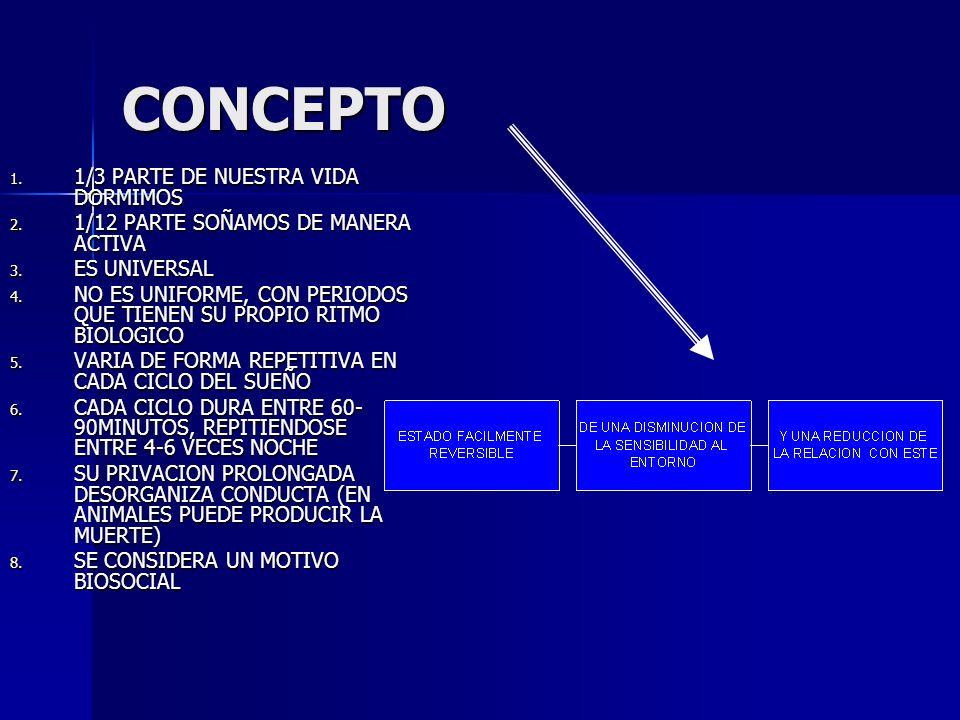 CONCEPTO 1/3 PARTE DE NUESTRA VIDA DORMIMOS