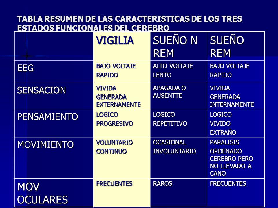 VIGILIA SUEÑO N REM SUEÑO REM MOV OCULARES EEG SENSACION PENSAMIENTO