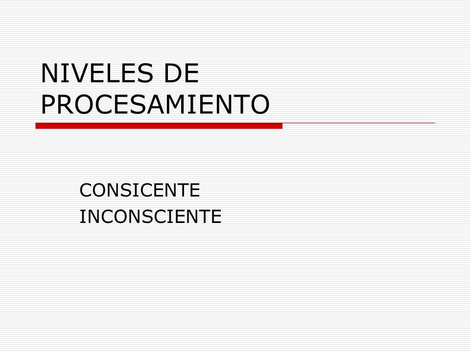 NIVELES DE PROCESAMIENTO