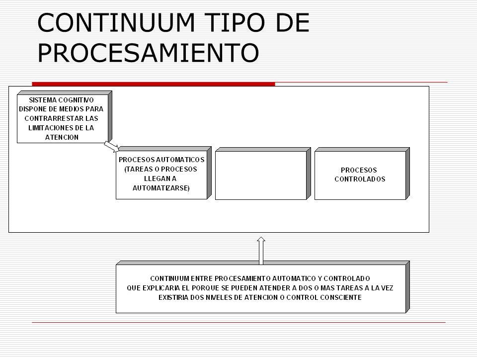 CONTINUUM TIPO DE PROCESAMIENTO
