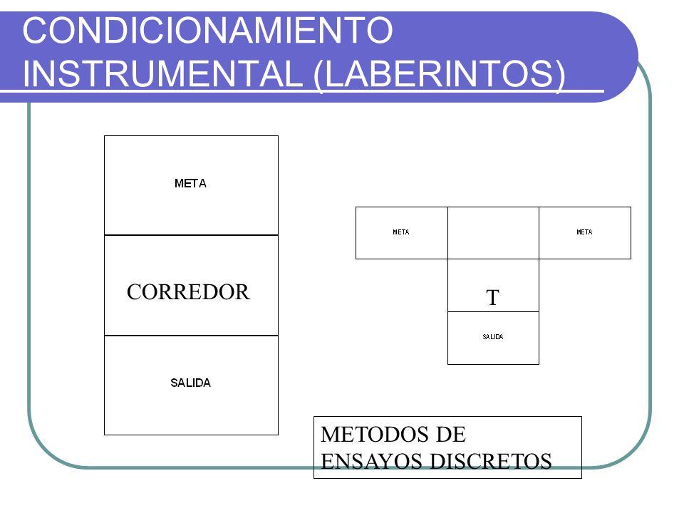 CONDICIONAMIENTO INSTRUMENTAL (LABERINTOS)