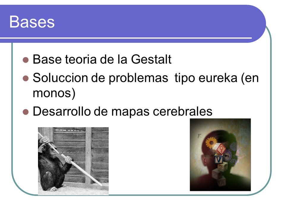 Bases Base teoria de la Gestalt