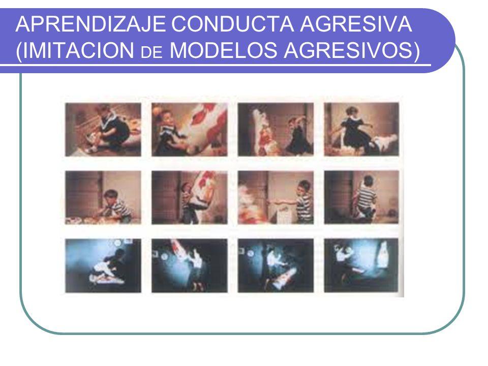 APRENDIZAJE CONDUCTA AGRESIVA (IMITACION DE MODELOS AGRESIVOS)
