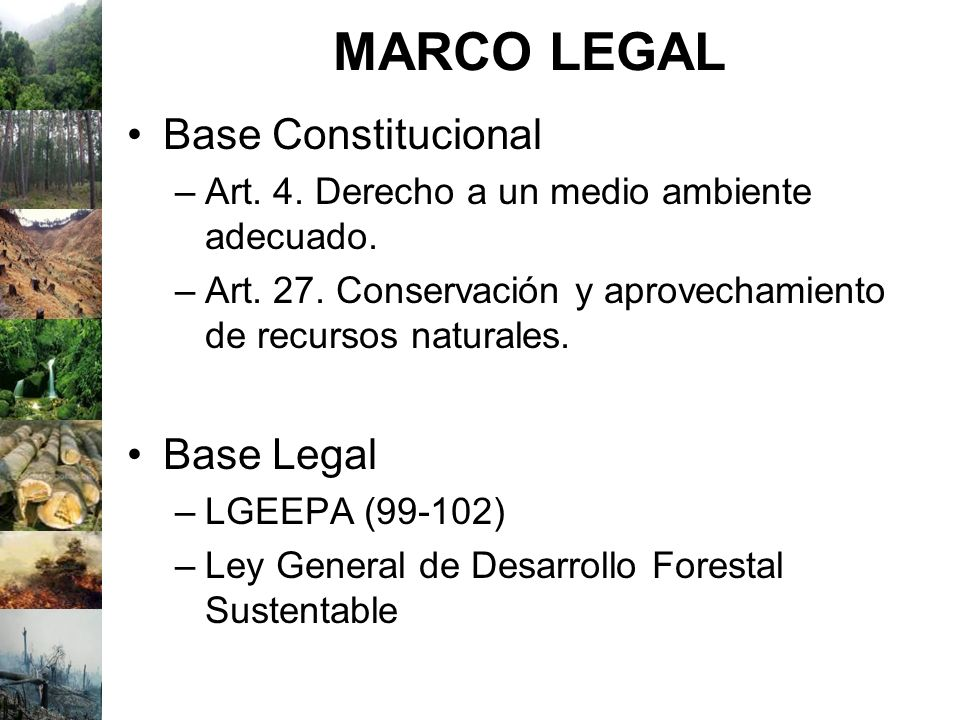 MARCO LEGAL Base Constitucional Base Legal