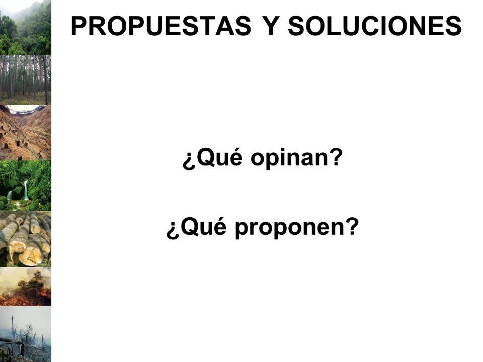 PROPUESTAS Y SOLUCIONES