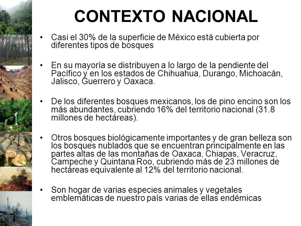 CONTEXTO NACIONAL Casi el 30% de la superficie de México está cubierta por diferentes tipos de bosques.