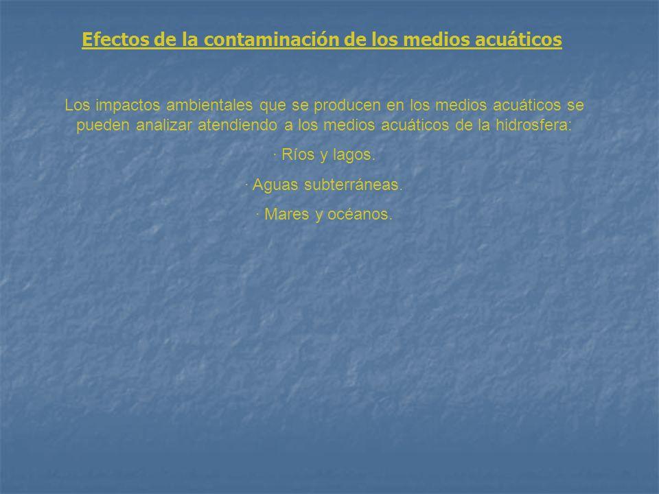 Efectos de la contaminación de los medios acuáticos