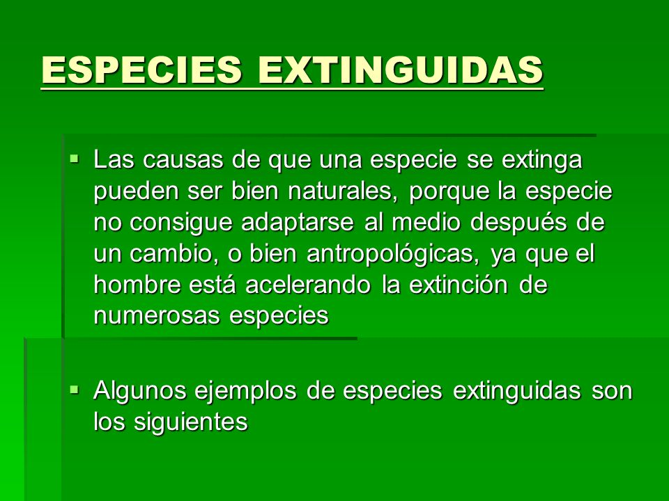 ESPECIES EXTINGUIDAS