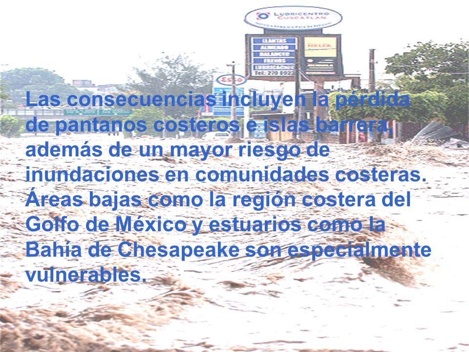 Las consecuencias incluyen la pérdida de pantanos costeros e islas barrera, además de un mayor riesgo de inundaciones en comunidades costeras.
