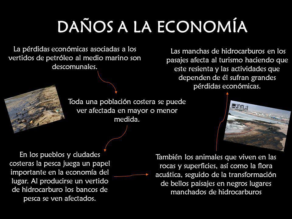 DAÑOS A LA ECONOMÍA La pérdidas económicas asociadas a los vertidos de petróleo al medio marino son descomunales.